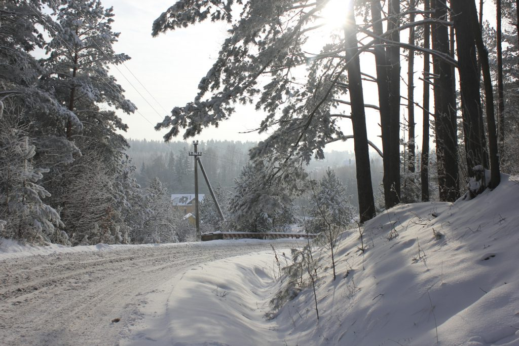 winterphoto