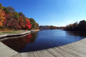 turkeyswamppark_lake