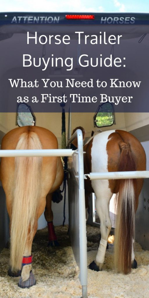 Horse Trailer Buying Guide: What You Need to Know as a First Time Buyer
