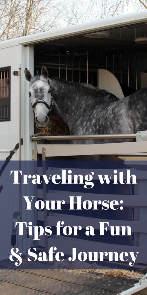 Traveling with Your Horse: Tips for a Fun & Safe Journey
